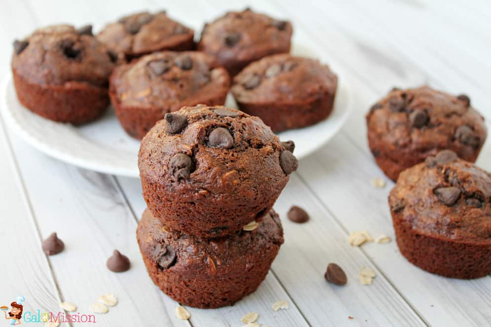 Skinny Oatmeal Chocolate Chip Muffins - Gal on a Mission