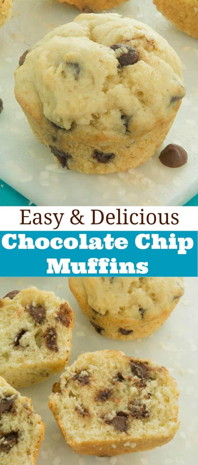 ​Easy Chocolate Chip Muffins Recipe - So moist and delicious! ​