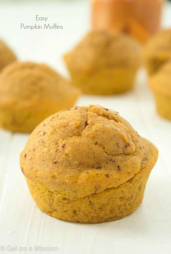 Easy and delicious pumpkin muffins that you will enjoy the entire fall season! from @galmission